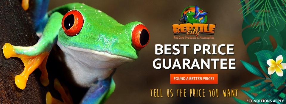 website-revamp-reptile-banner